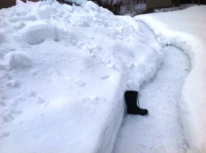 This is the path beside the garage. Made it myself!